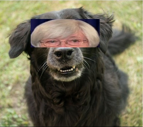 Fed Dog Yellen