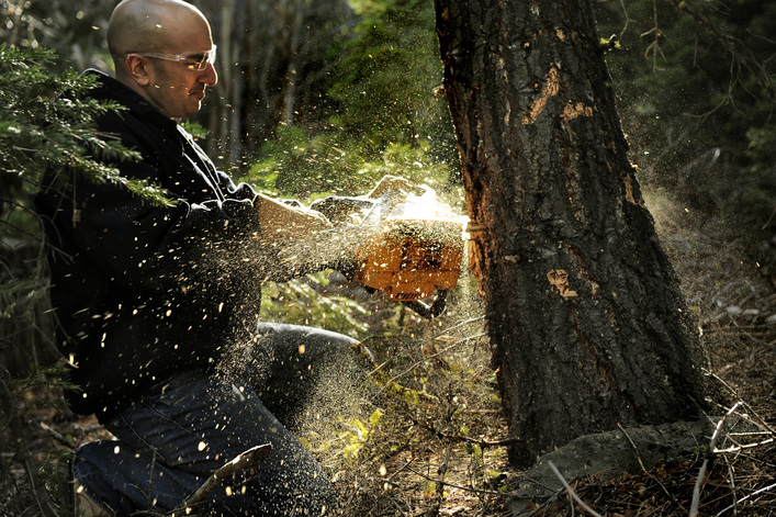 Kashkari the wood-chopper is boomeranging back – all things considered, it may have been better if he had stayed in the woods. Photo credit: Linda Davidson / The Washington Post