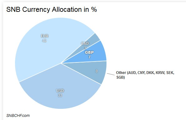 SNB Currency Allocation 2016