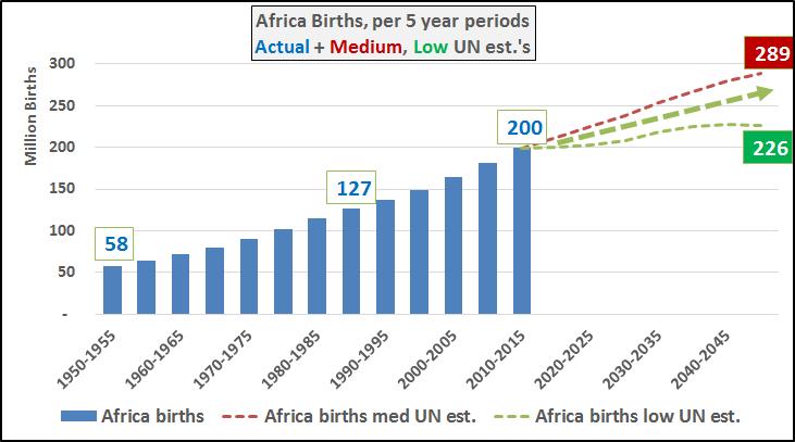 Africa Births