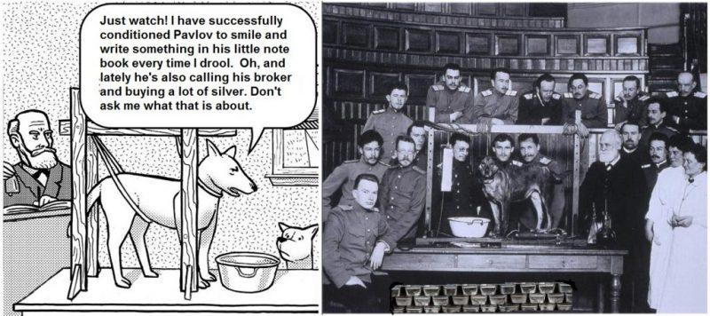Pavlovs Secrets