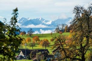 Farms in Switzerland