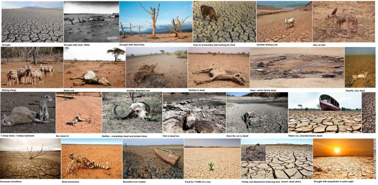 Drought and its victims